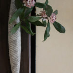 縄紋槍掛花